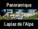 chartreuse178: Beau lapiaz près du chalet de l'Alpe