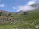 pyrenees0457: