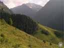 pyrenees0498: