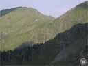 pyrenees0528: