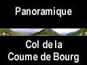 pyrenees0535: