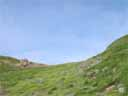 pyrenees0538: