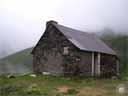 pyrenees0598: