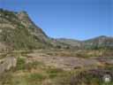 pyrenees0744: