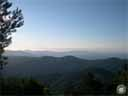 pyrenees0983: