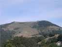 pyrenees1027: